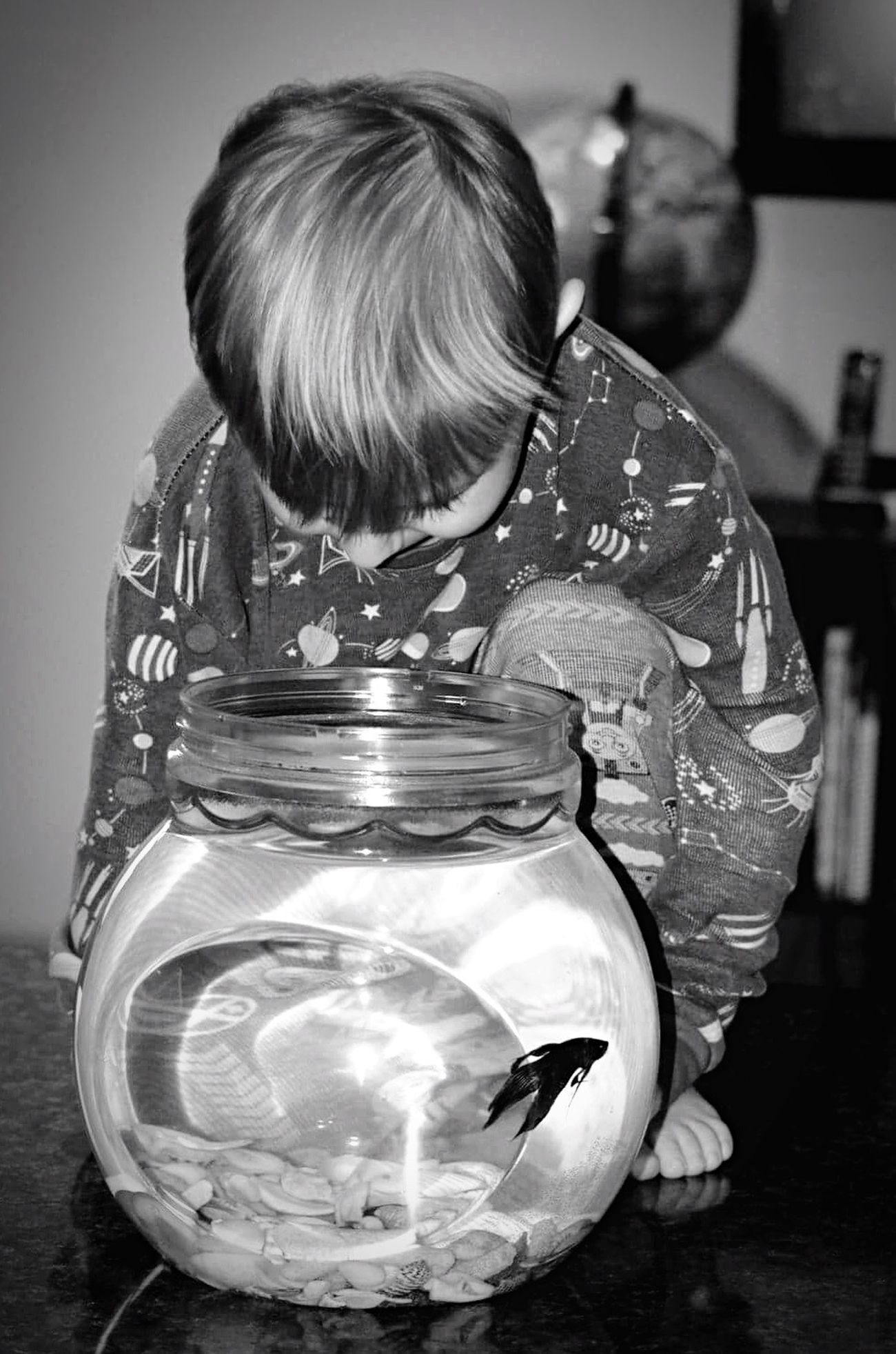Ournewpet Fish Ryder HappyBoy Happy Fish