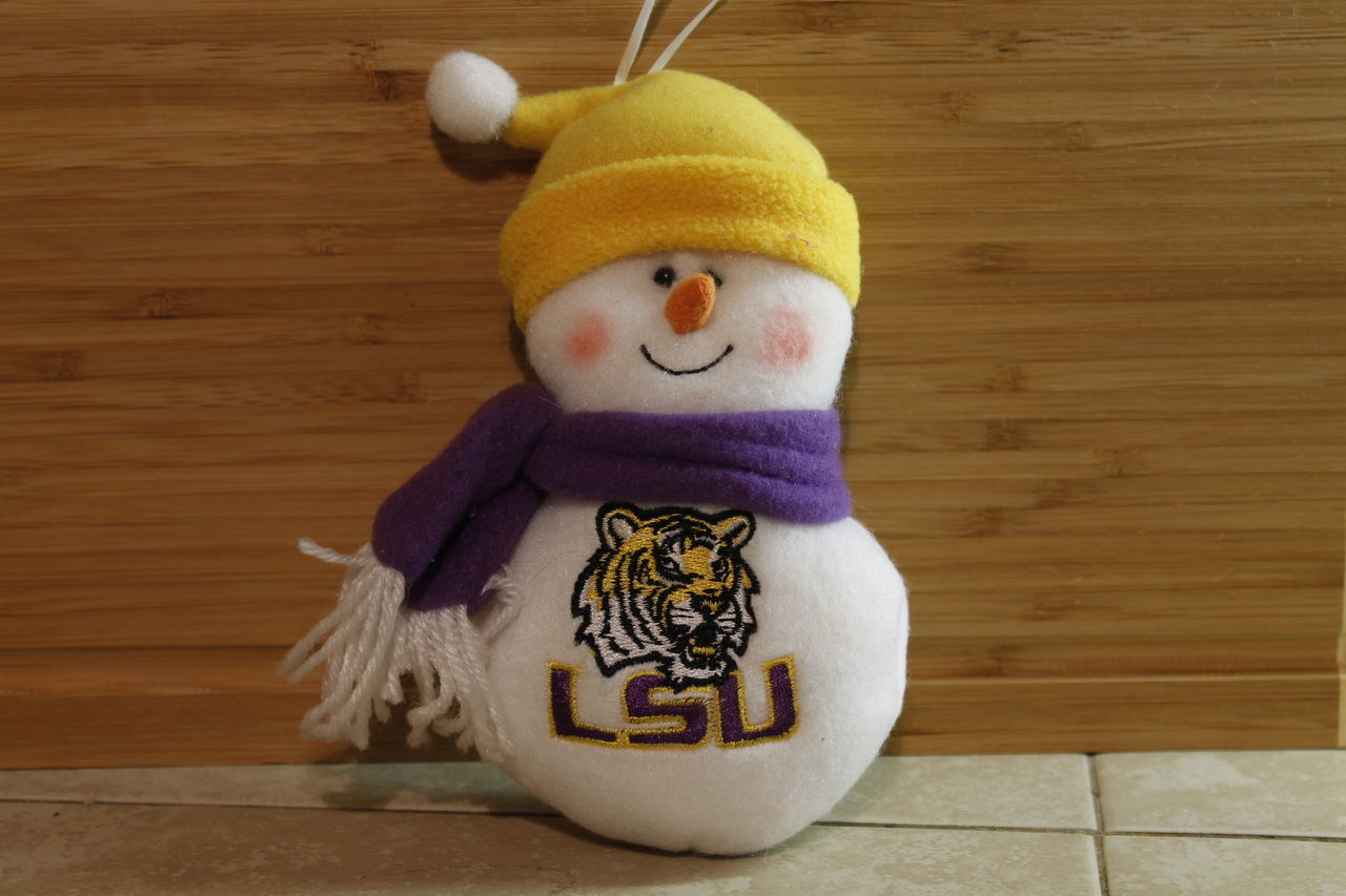 Berries Blueberries Close-up Day Fall Weather Indoors  LSU Mardi Gras Mardi Gras Beads No People Snowman Stuffed Toy Teddy Bear Toy