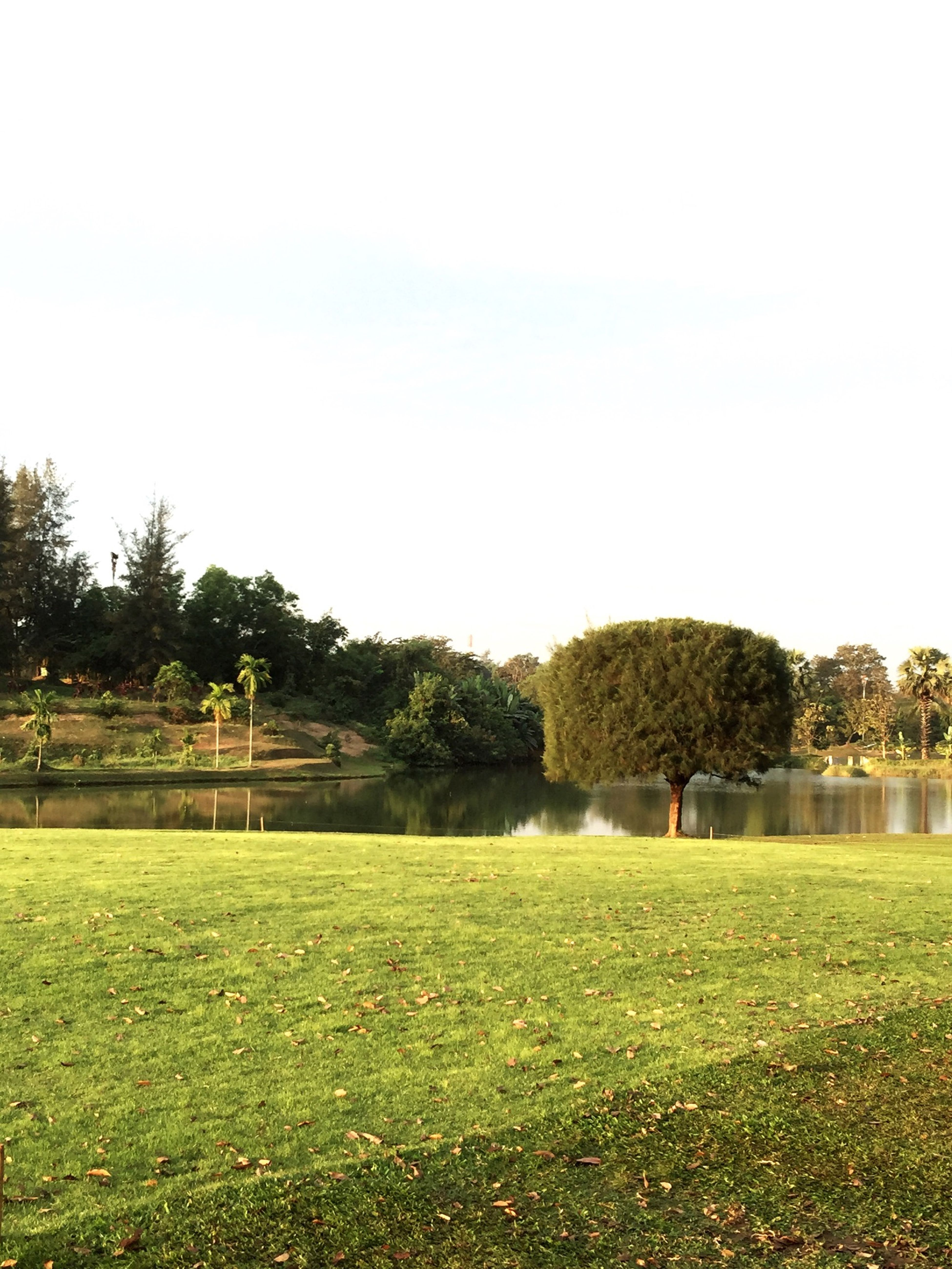 The Places I've Been Today YCDCGolfclub