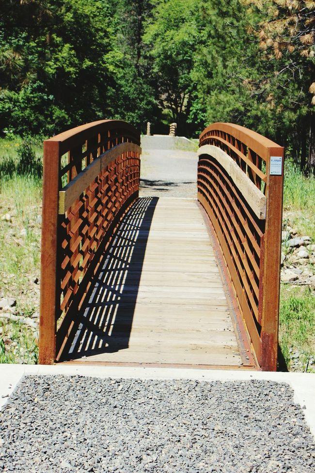 Bridge Outdoors Parks Nature Enjoying Life