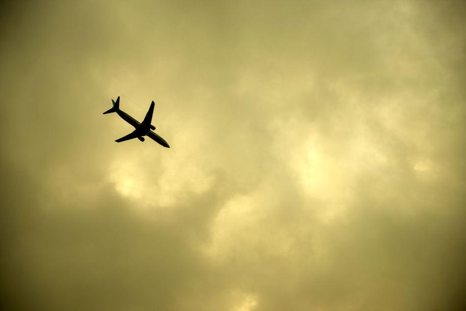 AirPlane ✈ Fly To The Sky Sky