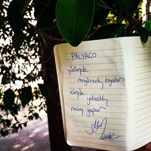 """Günün Makyaj ı şebekliğe doğru kaçmış Siir i """" Palyaço """"Poems poetry poet şiirsokakta şiirinibıraktım postitşairi şiirheryerde instapoems instaturkey şiirler şiirsokağı şiir nightpoem şiiratlası şair şiirkokusu şiiraşkı poem şiirkitabı poemtime şiiroku siirhayatinozeti instasiir cakmaktasiblog çakmaktaşı akındursun writter instapoem"""