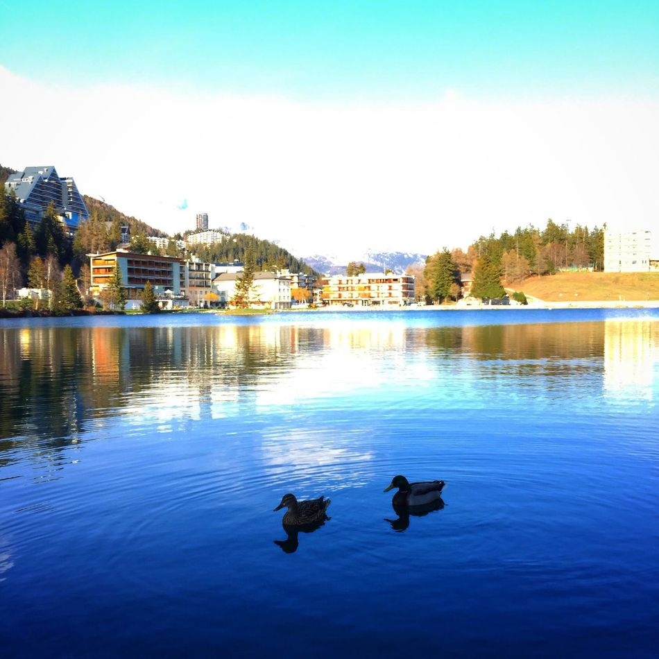 Beauty In Nature Cransmontana Tranquility Waterfront No People Sky