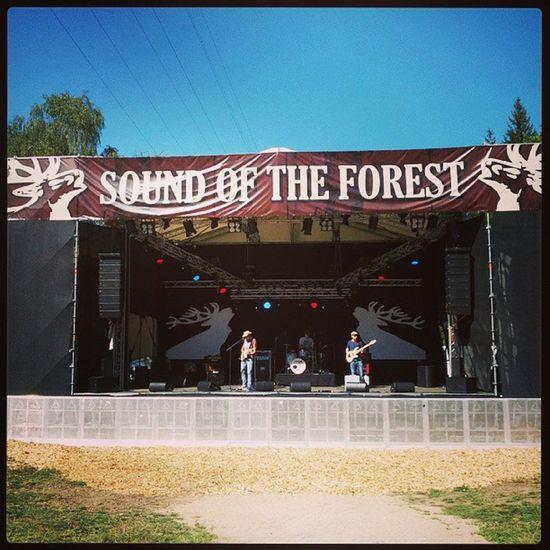 Soundoftheforest Festival Erbach Michelstadt