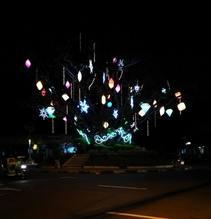 Lico's park at night. Antipolo Philippines Lights Illumination Tree Christmas Lights Christmas Tree Outdoors