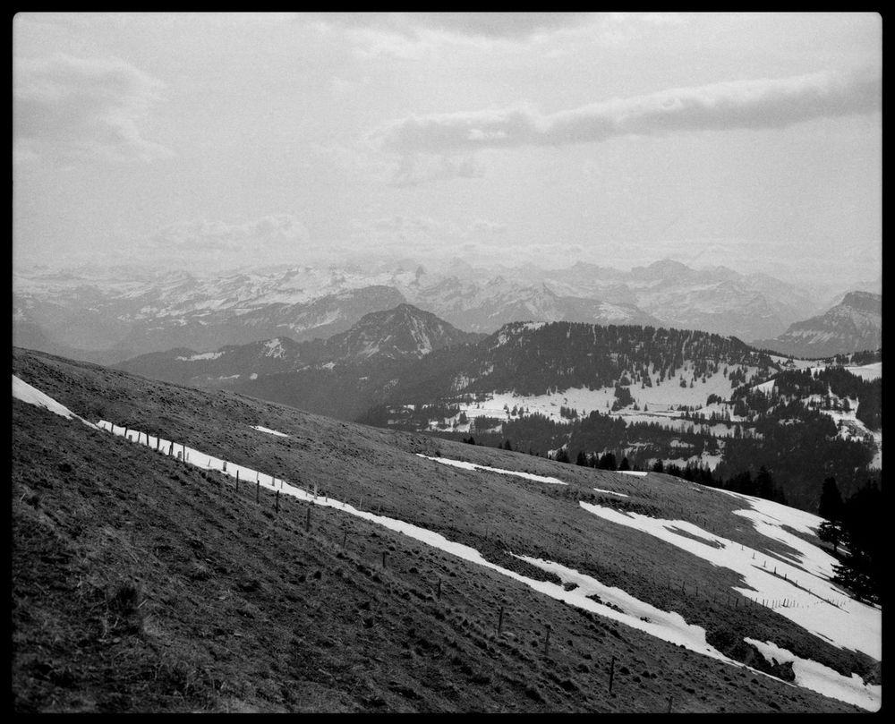 Mount Rigi in Black and White Alps Analogue Photography Arth Black And White Branches Cable Car Chopped Wood Climate Change Elevation Grain Hiking Mount Rigi Mountain Mountain Skyline Nature Outdoors Rigi Bahn Round Path Snow Spring Swiss Alps Switzerland Wanderweg Winter