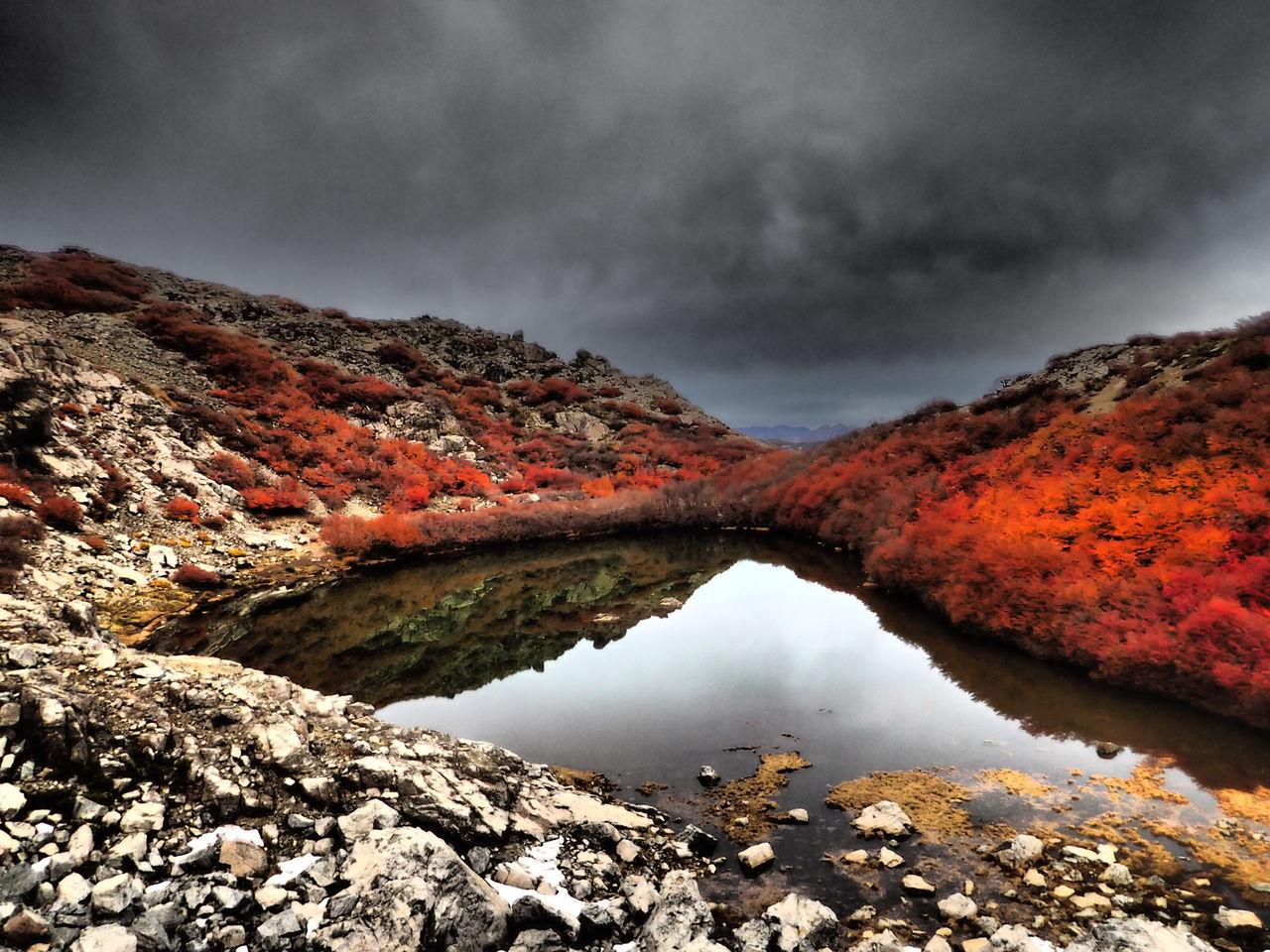 Laguna Autumn