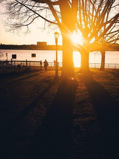 Beautiful Sun, Set 1.0 Rahim RahimNoel No People New York NY NYC Beauty In Nature Beautiful Vivid First Eyeem Photo Yellow 🌇 Sun Set Goldenhour Blue Blue Sky Lakeview Lake View Love