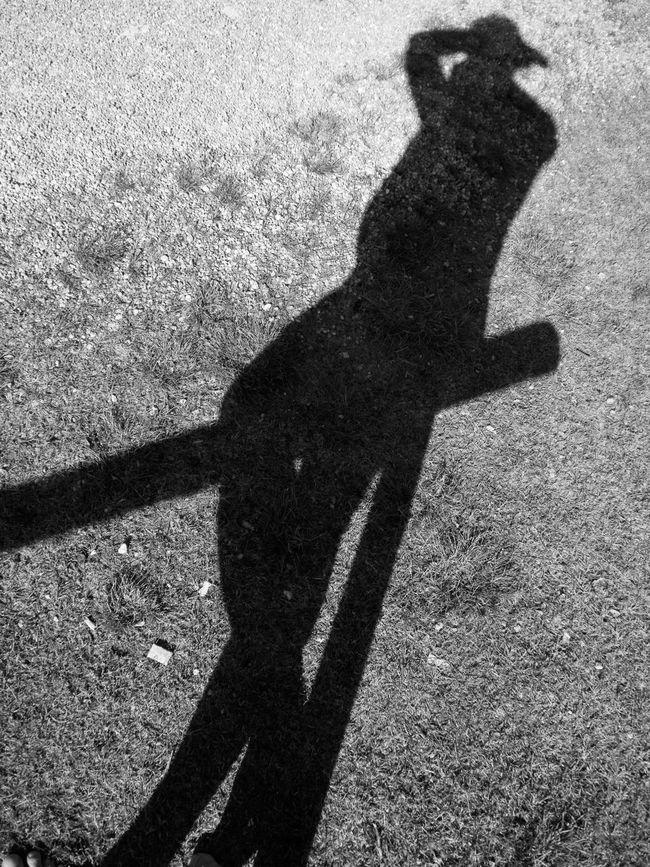 Black And White Bw Day Field Focus On Shadow Ground High Angle View Monochrome Outdoors Outline People Person Photographer Shadow Slanted Standing Standing Sunlight Sunny