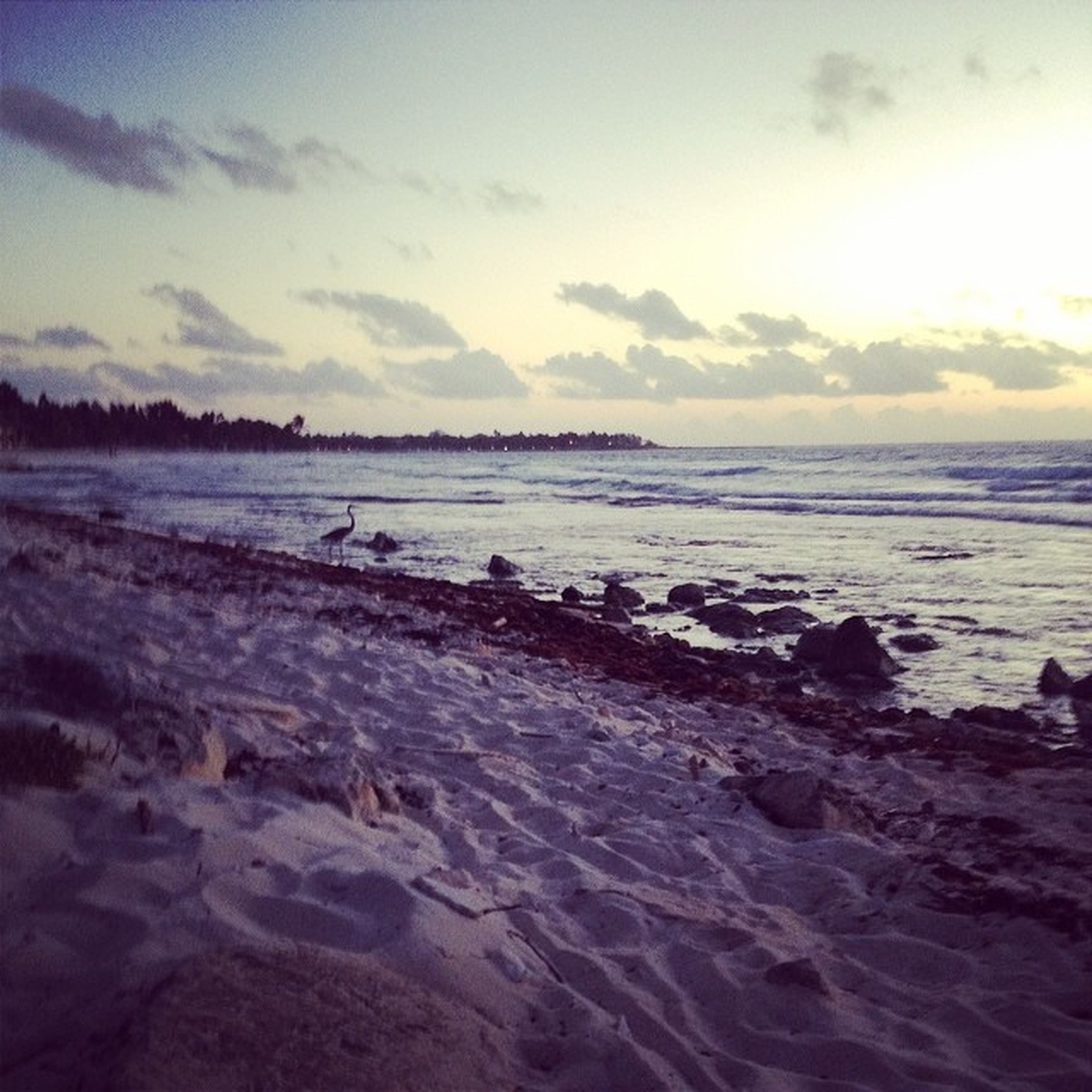 sea, water, beach, sky, scenics, tranquil scene, tranquility, beauty in nature, horizon over water, shore, nature, wave, cloud - sky, idyllic, sand, sunset, rock - object, outdoors, rippled, waterfront