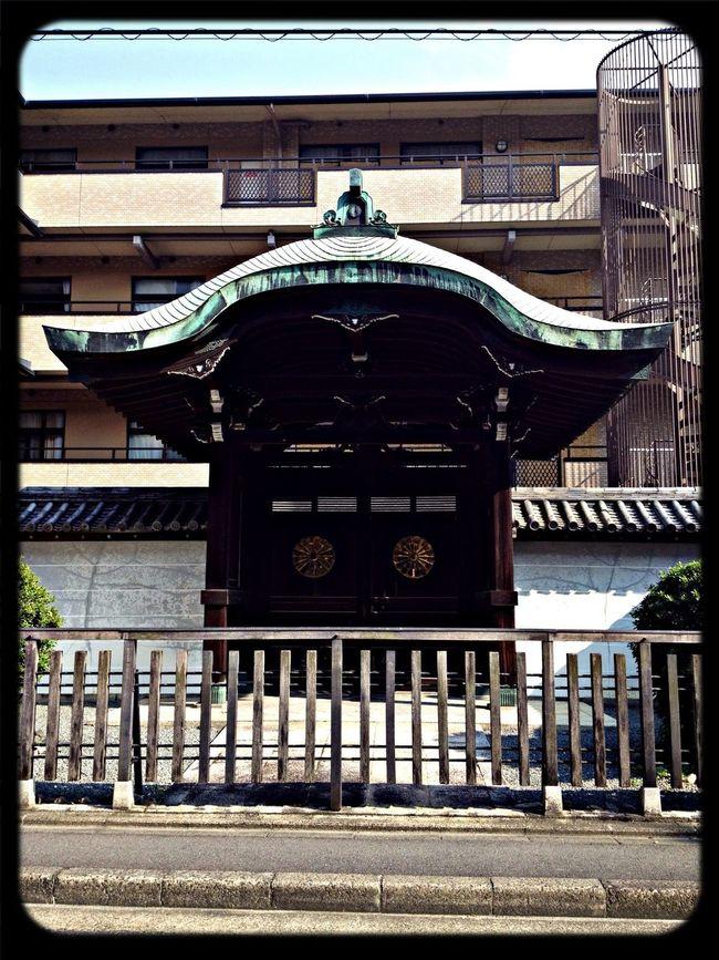 清浄華院 勅使門 Taking Photos The Purist (no Edit, No Filter) Temple Gate