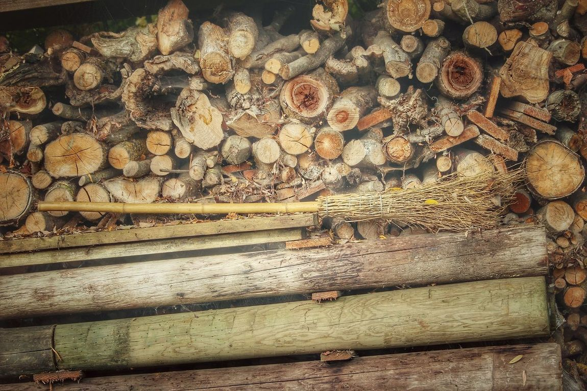 Log Wood - Material Timber Stack Deforestation Lumber Industry Woodpile No People Day Outdoors Nature Reptile Close-up Forestry Industry Animal Themes Besen Holz Holzstapel