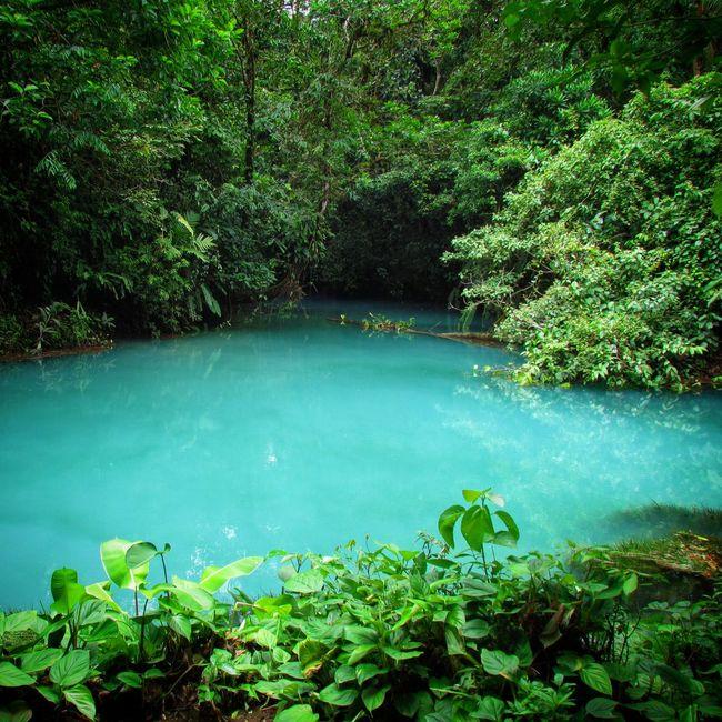Bestoftheday Outside Photography Earthporn Explore Hiking Tenorio Rio Celeste Rainforest