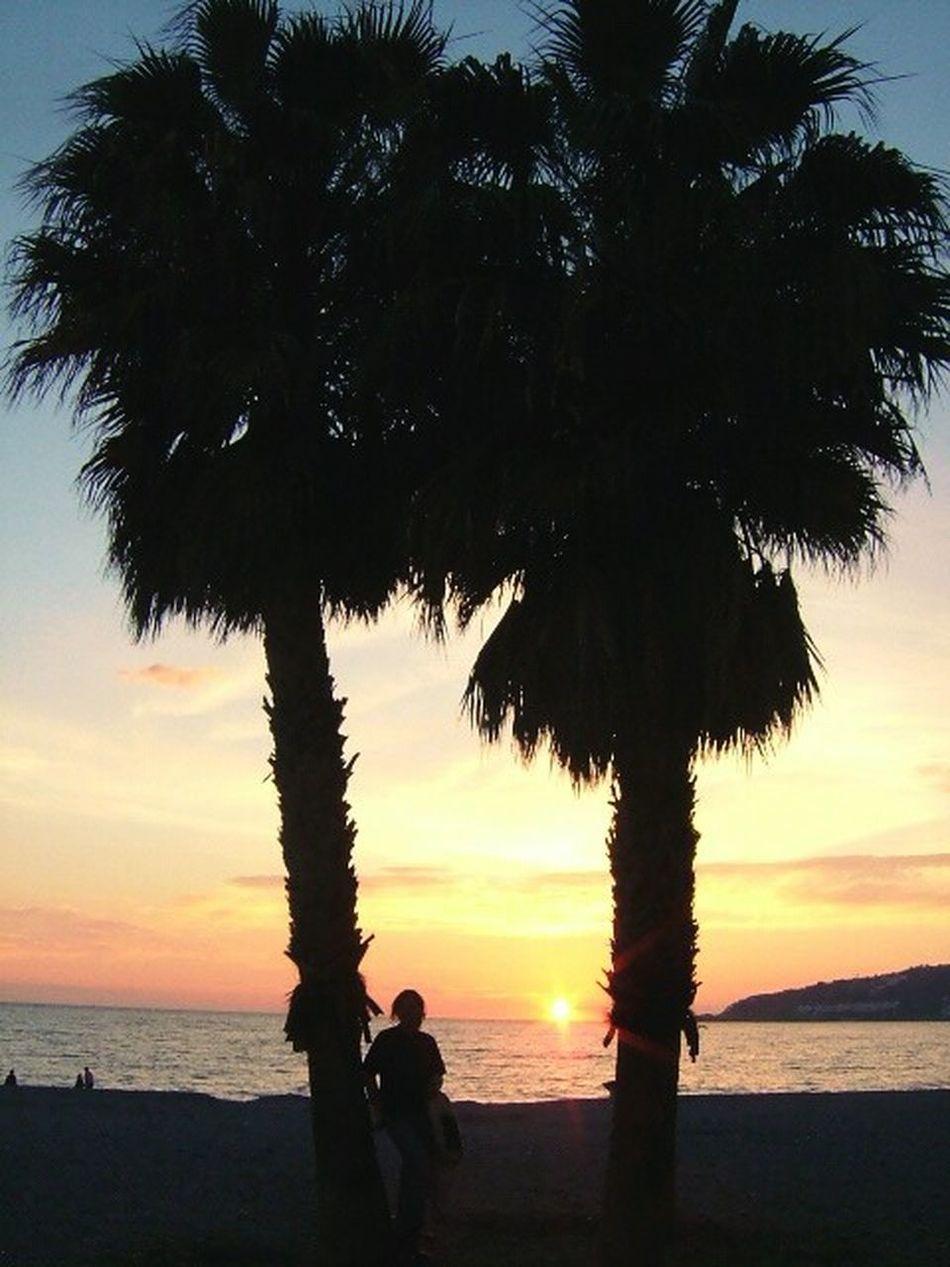 Beachphotography Beach Beach Life Cullera Sunset Summer Summer Vibes
