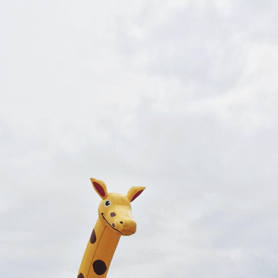 Beautiful stock photos of luxemburg, Animal Representation, Cloud - Sky, Cloudy, Copy Space