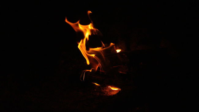 Black Background Bonfire Burning Campfire Close-up Dark Dragon Dragon Of Fire Fire Fire - Natural Phenomenon Firewood Flame Glowing Heat Heat - Temperature Illuminated Night No People Orange Color Outdoors Pivotal Ideas