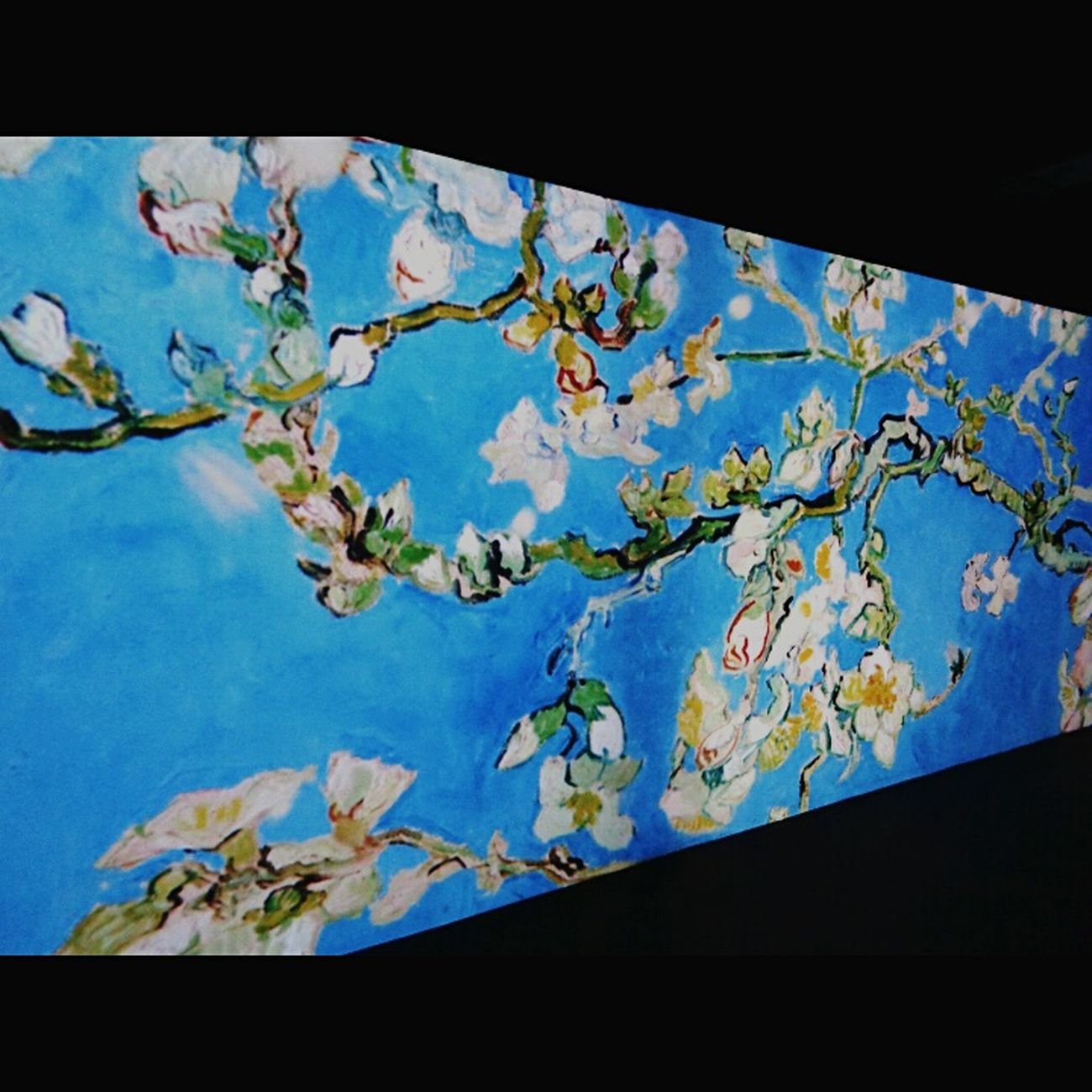 Flower Petals🌸 Blossoms  Vangoghalive Throwback Painting Art