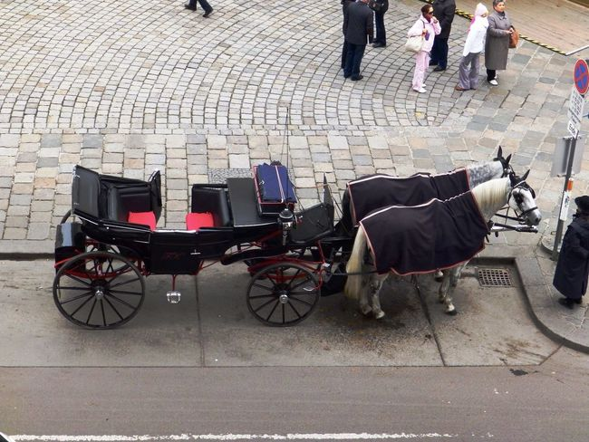 fiacre (Fiaker) in Vienna Cab Fiacre Fiaker Horse Mode Of Transport Street Transportation Vienna