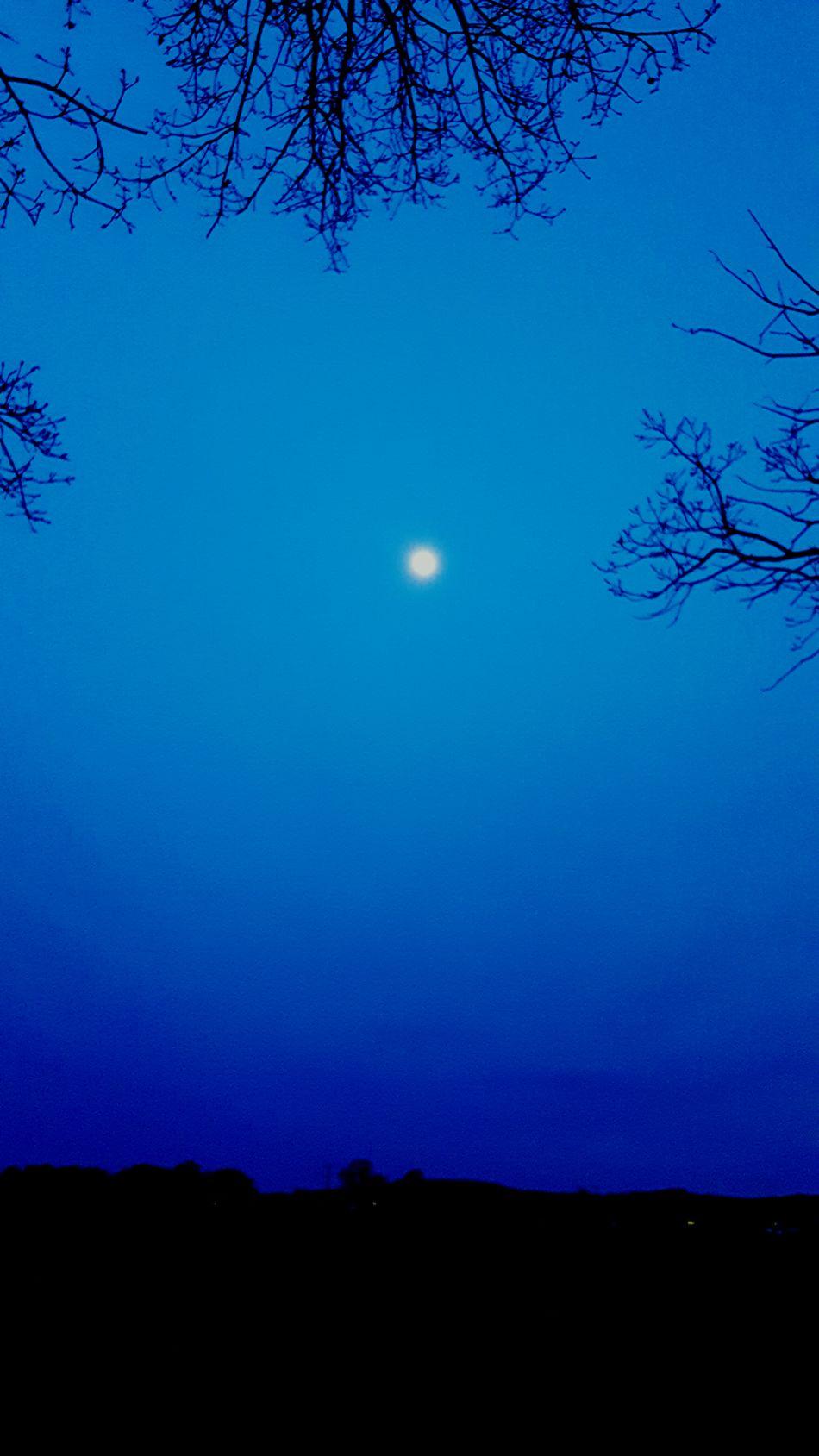Trees Moon Clear Sky Moonlight Night House