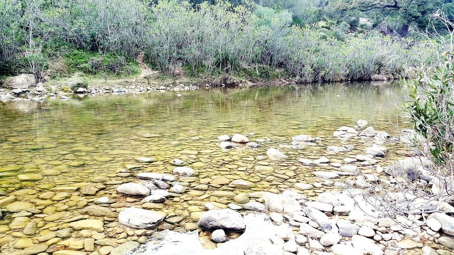 River Hikinglife Earth River View Riverside Riverbank River Walk Jimena De La Frontera River Life Looking For Adventures Love Hiking Hiking Adventures Nature SPAIN Water Water Reflections The KIOMI Collection