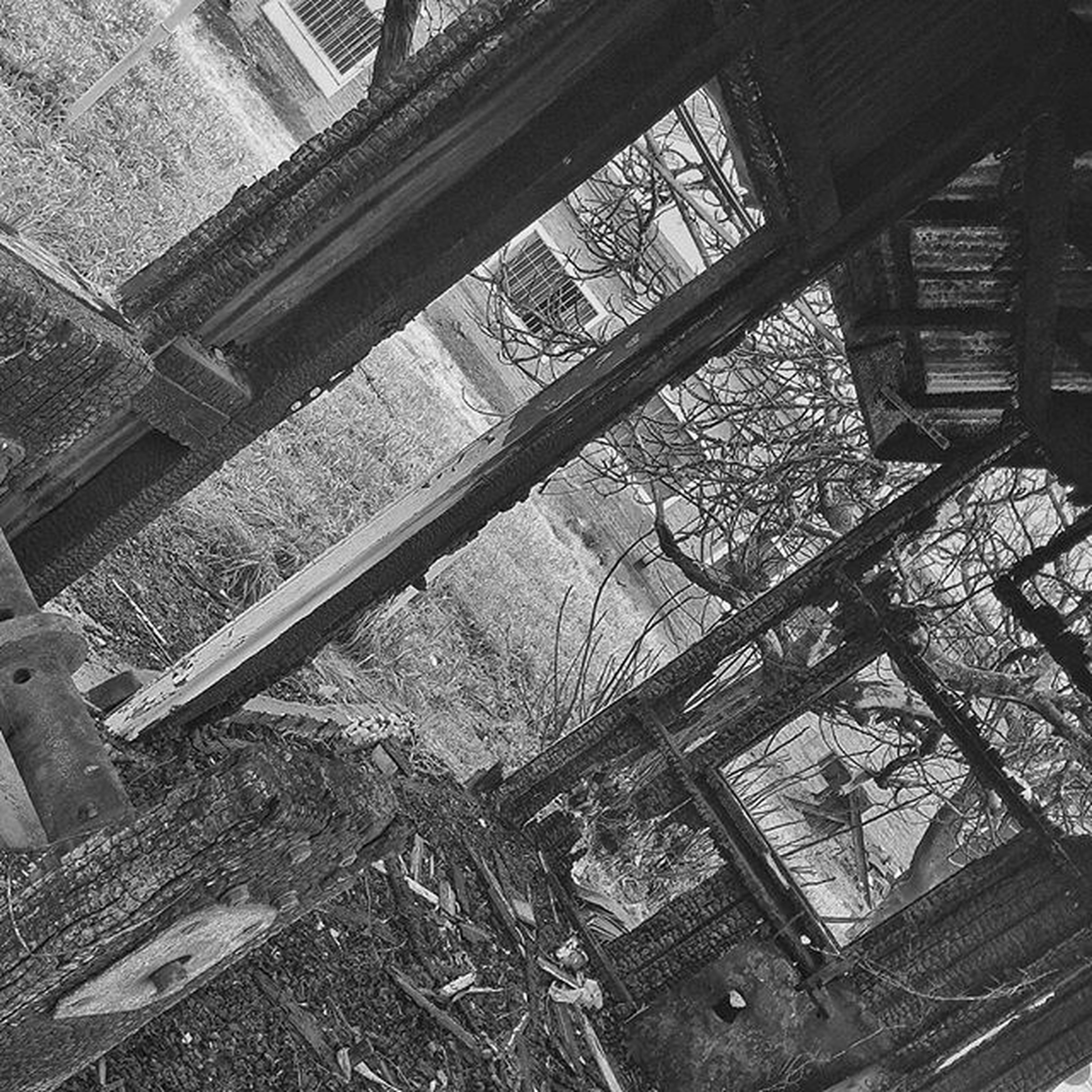 abandoned, built structure, architecture, damaged, obsolete, indoors, window, wood - material, run-down, deterioration, old, building exterior, house, high angle view, bad condition, broken, day, weathered, tree, no people