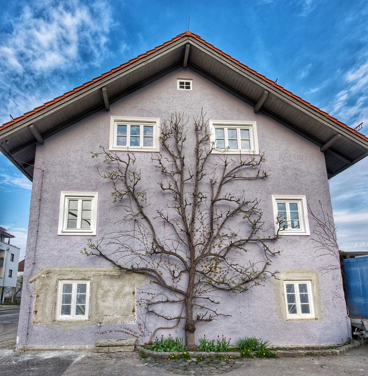 architecture, building exterior, window, built structure, cloud - sky, sky, house, facade, no people, outdoors, day, tree, low angle view, residential building, bare tree, exterior, branch, nature