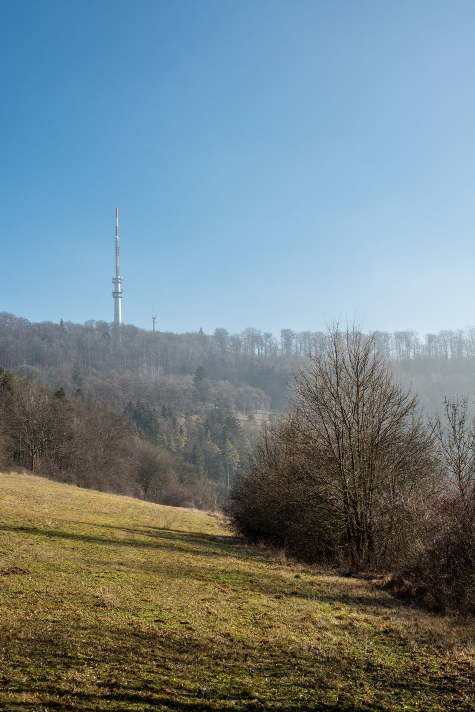 Clear Sky Day Field Grass Landscape Nature No People Outdoors Radio Tower Sky Tree TV Tower