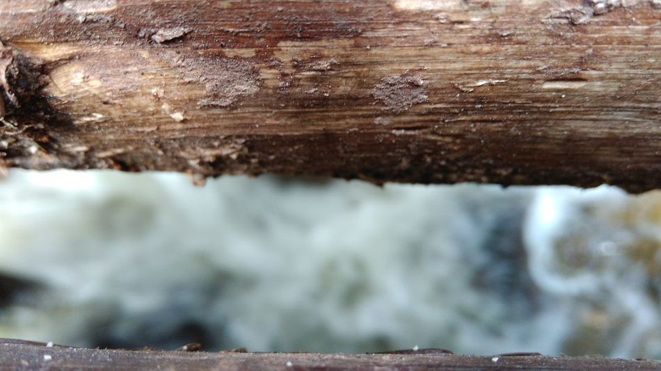 Backgrounds Beauty In Nature Bridge Close-up Day Full Frame Natural Pattern Nature No People Outdoors Rock - Object Rock Formation Rough Selective Focus Textured  Tree Trunk Vitosha Mountain Water Flowing Water Under Bridg Water Under The Bridge Wood Wood - Material Wooden Bridge Wooden Bridge In Forest Wooden Bridges