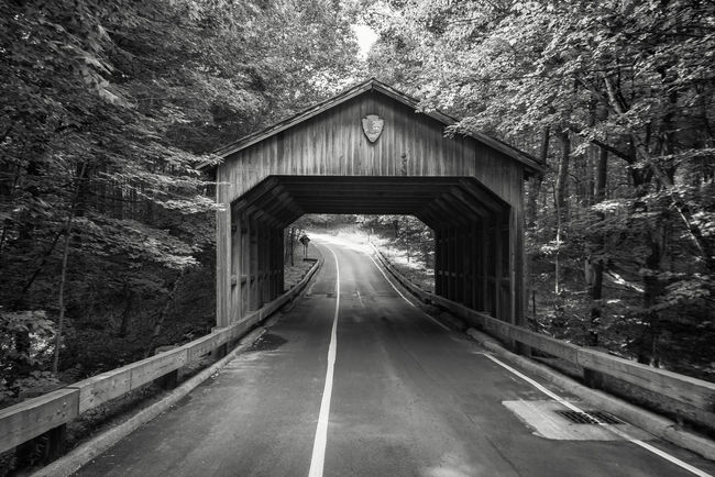 Architecture Bridge Bridge - Man Made Structure Built Structure Day Diminishing Perspective History Monochrome Photography Outdoors Road Road Marking The Way Forward Transportation Tunnel