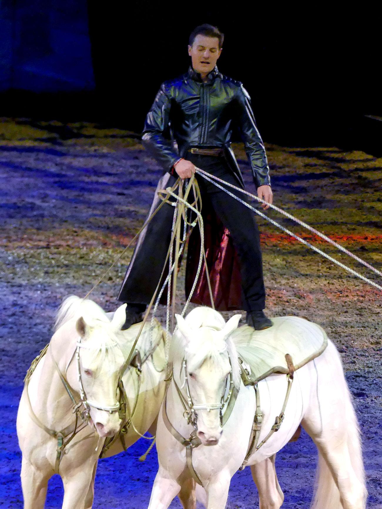 Apassionata Horse Show Man On Horseback Show Two Horses White Horses