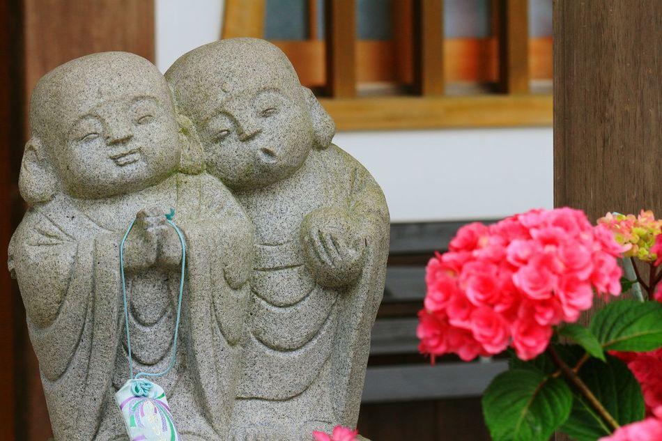 この前とは違うお地蔵さん♪(*^^)/ ユーモラスだけど仲良し♪(*'艸`) EyeEm Best Shots - Flowers EyeEm Flower Hydrangea Hydrangeas 紫陽花 あじさい あじさい寺 Japanese Culture Japanese Style お地蔵さん