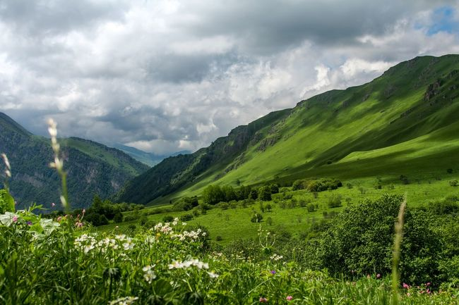 Sky Redditphotography Landscape Natgeolandscape Grassy Skyporn Travel Koban Vladikavkaz Fiagdon Mountain_collection Ossetia Grass Hill Clouds Travel Photography Nature Hills Highlandcollective Mountains Summer Mint Leaves Flowers
