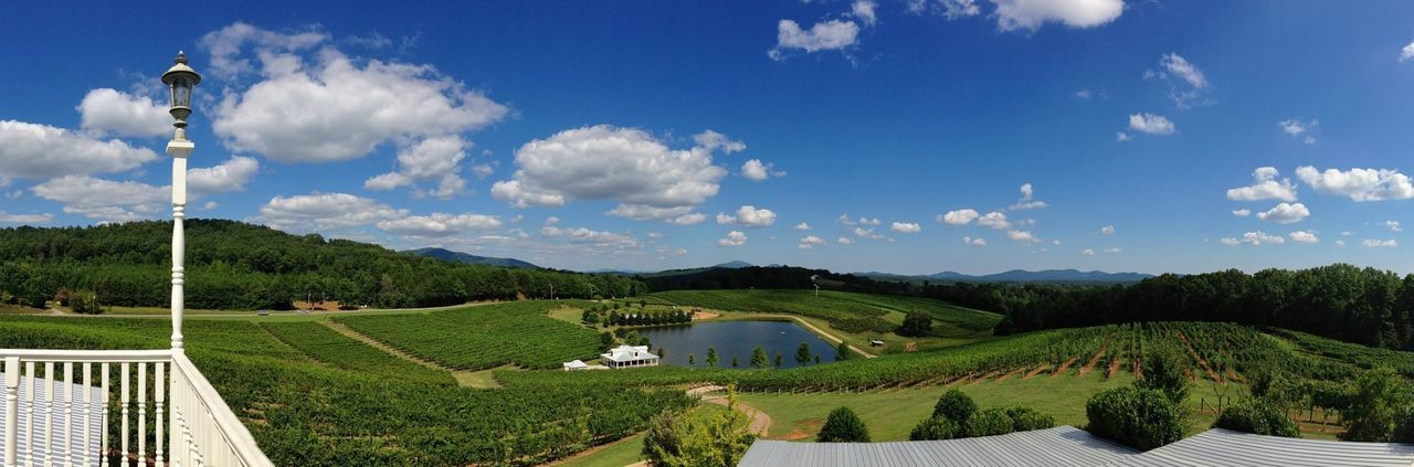 Frogtown Winery. Snapseed Panorama Frogtown Winery