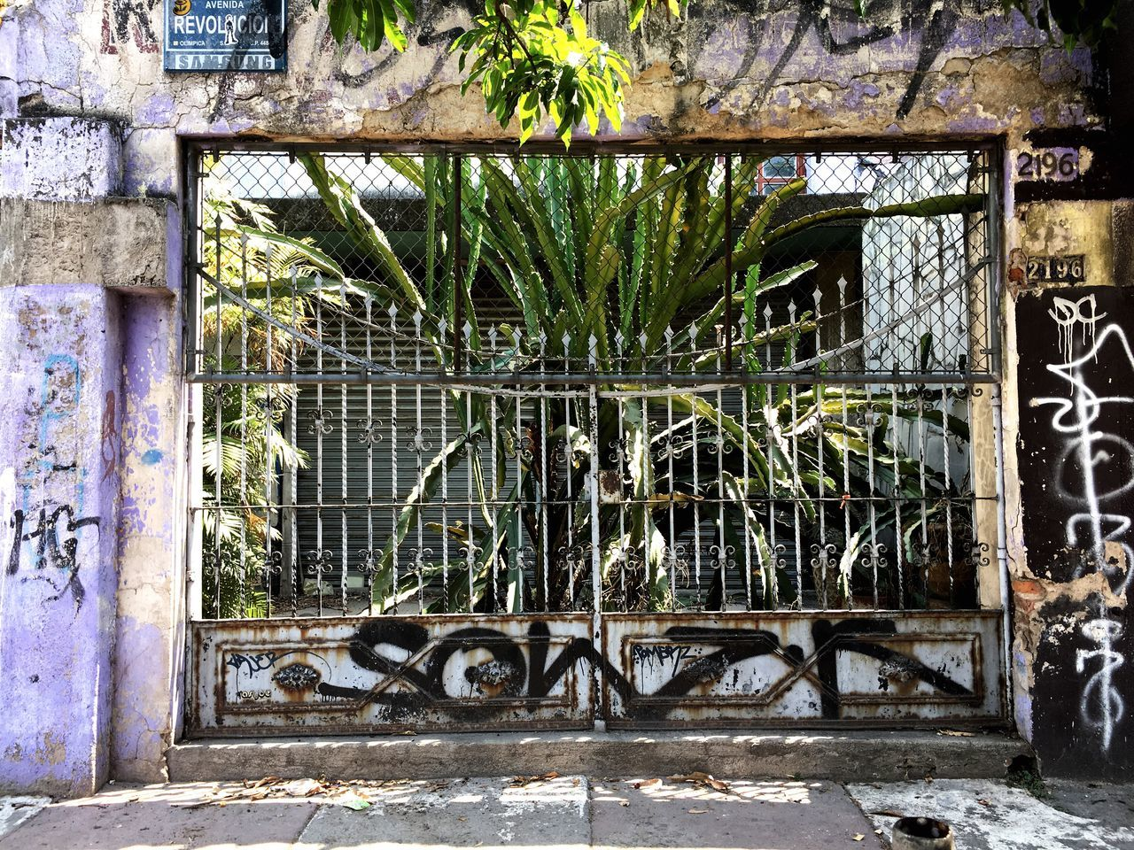 Disfrutando De La Vida Graffiti Architecture Built Structure Abandoned No People Building Exterior Outdoors Window Day Walking Around Walking Alone... Walking Around Taking Pictures