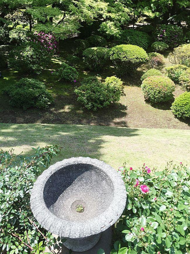 A Bird's Eye View Garden Formal Garden Park - Man Made Space Outdoors Collection