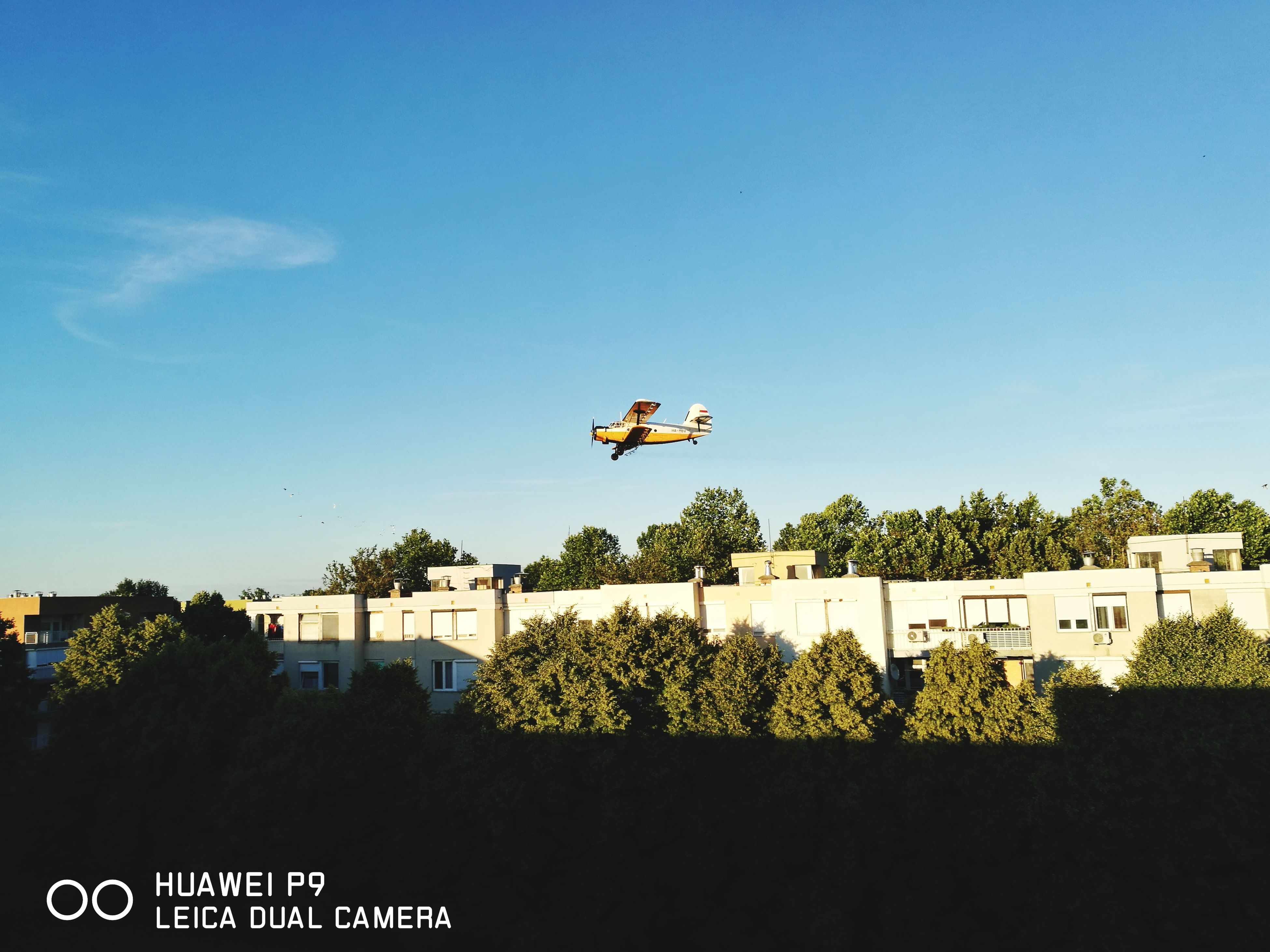 day, mid-air, tree, outdoors, architecture, flying, leisure activity, nature, built structure, real people, building exterior, airplane, one person, sky, people