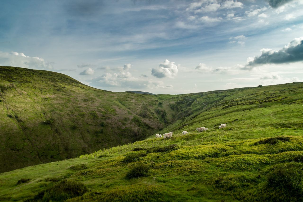 Long Mynd Shropshire Landscape Sky Church Stretton Clouds Sheep