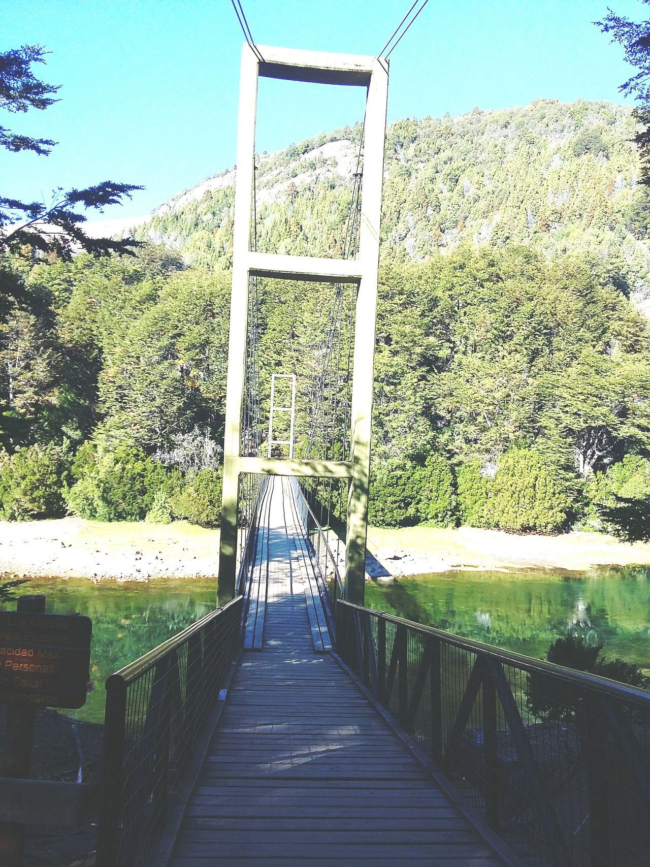 Ponte Aventura Natureza Rio Day . 🌍🌉🌳🐟🌄