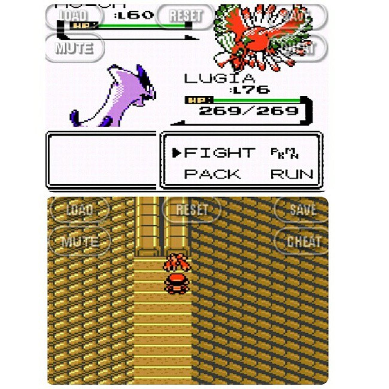 """Aquele momento em que você chega no topo da torre e encontra o """"iluminado"""". Pokémon Gameboy Gameboycolor Lugia Hooh Pokemoncrystal"""