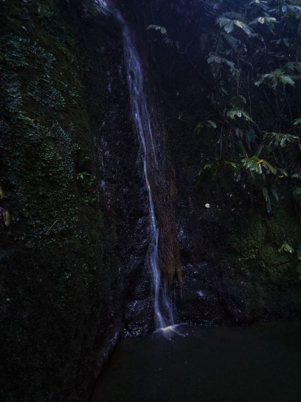 https://youtu.be/u54evZDpJOA. come fly with me Showing Imperfection Nature My Unique Style Down Under In NZ Fine Art Your Reality Is Not Mine Telling Stories Differently Autumn In New Zealand Travel Parks And Recreation Nature Photography Waterfalls And Calming Views  Hakarimata Falls Native Bush My Life From My Point Of View Darkness And Light Light And Shadow Green Scenic Landscapes Femalephotographer Beauty In Nature My Videos On IG Ciliegio_delizia