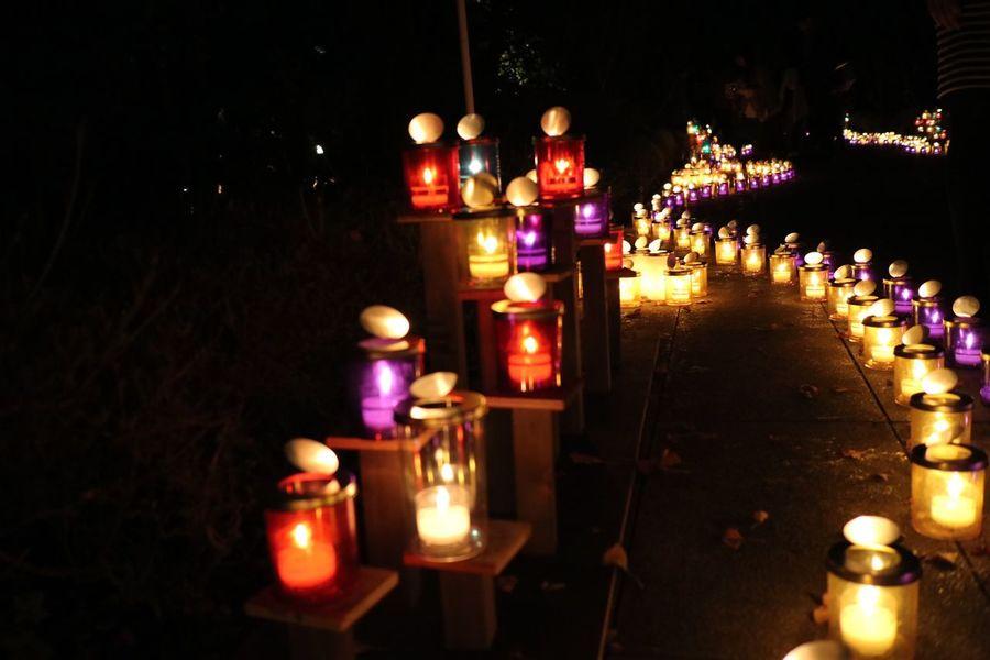 Shonan Shonancandle2015 Enoshima 江の島 湘南キャンドル