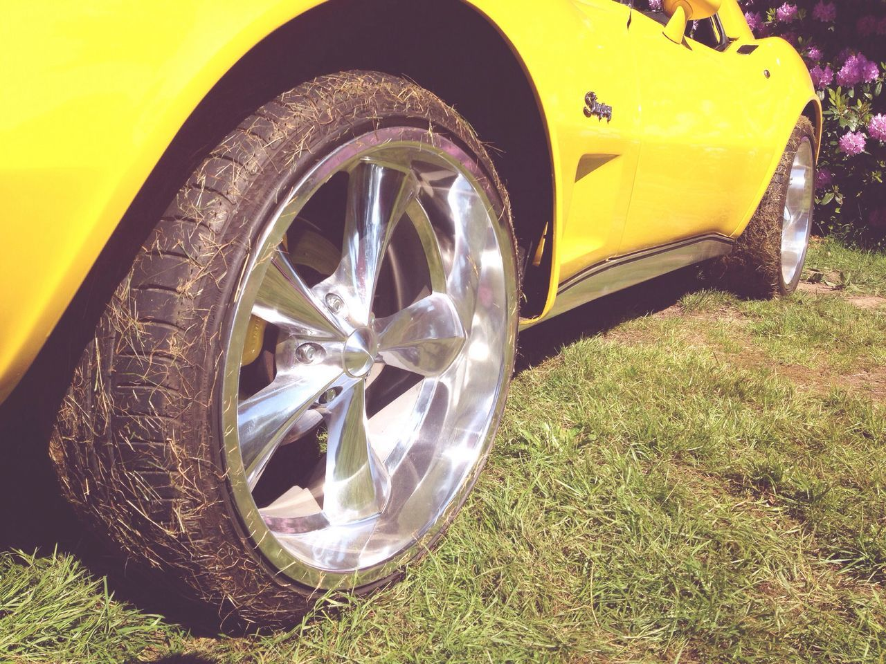 Beautiful Day Cars Car Grassy Awesome Cars CarShow Car Collection Denmark Is Awesome Yellow Tire Wheel Outdoors Day Iphone4only Weather Sun