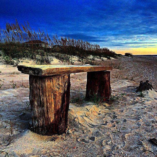 Sandytoesstudio Beachlife Backyard IPSHome