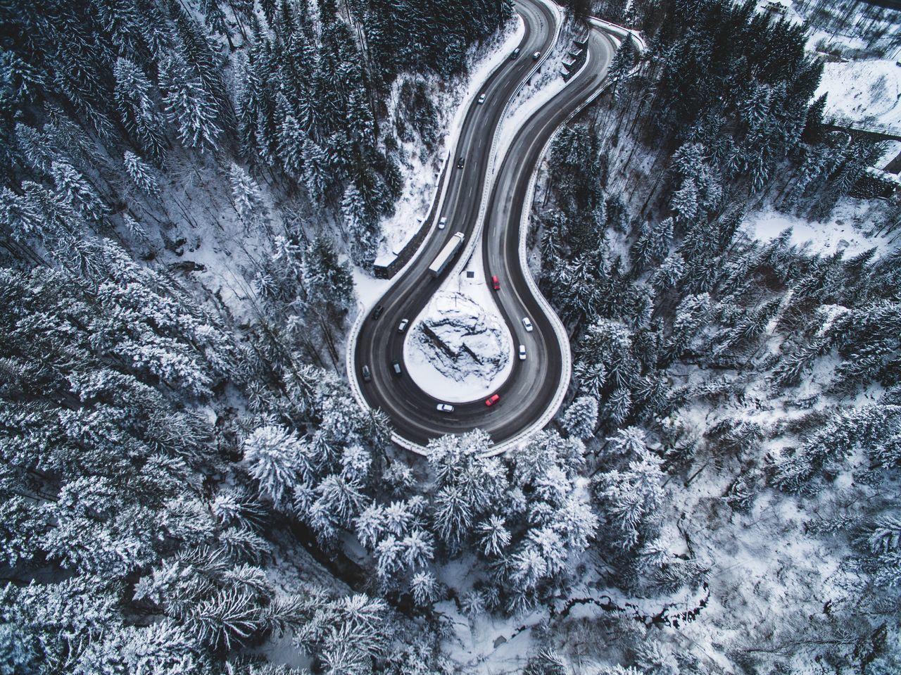 Snow Tree Landscape Drone  Winter Nature