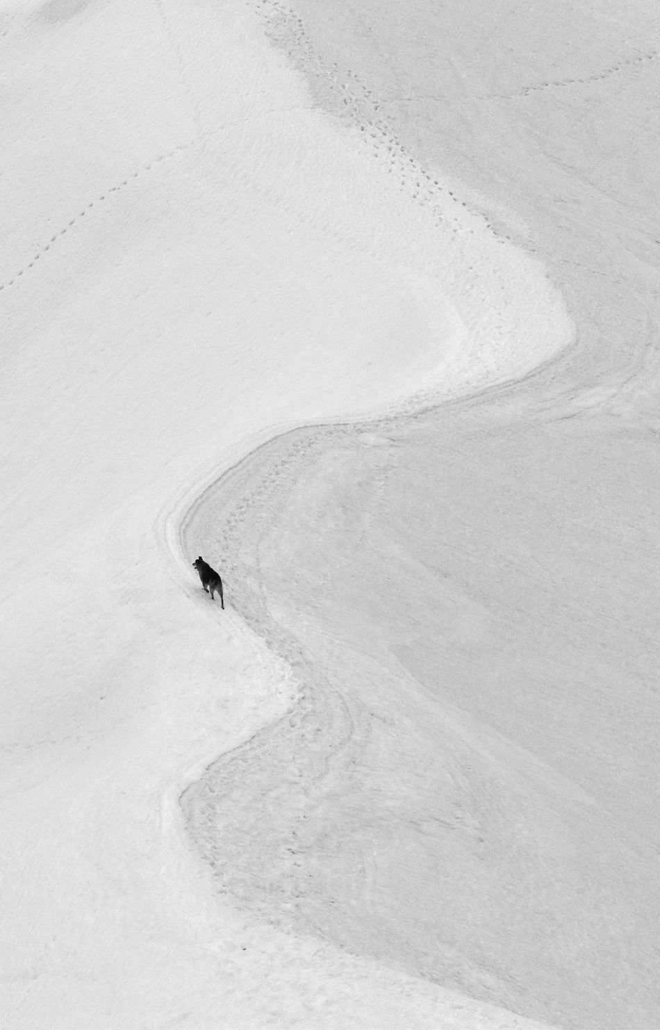 Beautiful stock photos of design, snow, winter, nature, high angle view