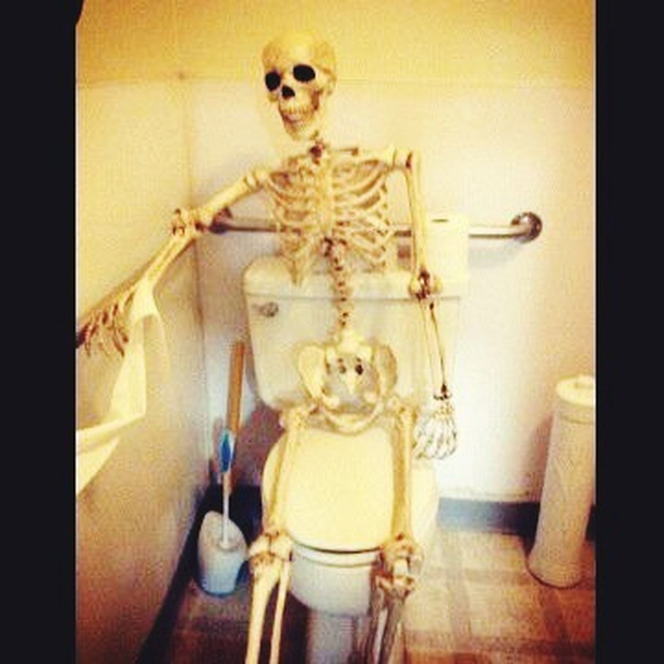 Brokinbonz Brokinbonz Clothing Toilet Skateboarding Skeleton Yisgoi