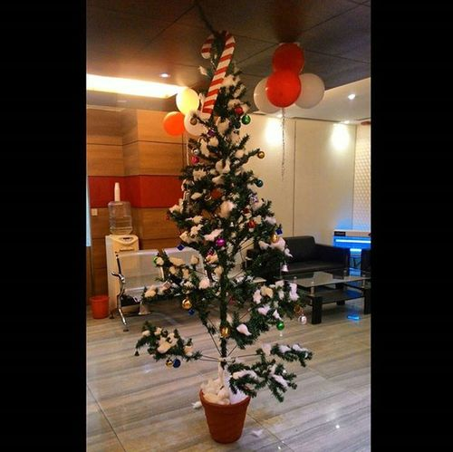 Christmas tree.... Christmas2015 Christams Tree Joy & Excitement In People Fullmoonchristmas Fullmoonday Christmas 2015  After 37 Years
