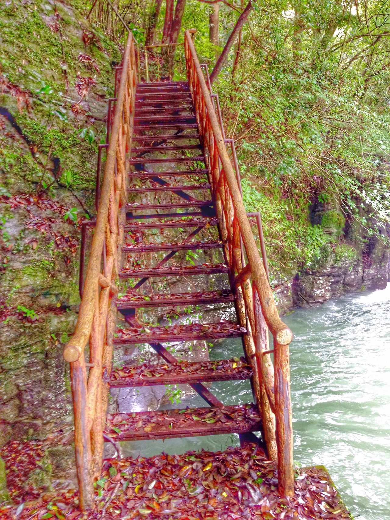 Beauty In Nature Staircase past the wate Waterfall Chasing Waterfalls In The Woods In The Forest Mountains And Valleys Creekside Trail The Great Outdoors - 2016 EyeEm Awards Japan Scenery In Nagasaki, Perfecture Japan Nature's Diversities - 2016 EyeEm Awards