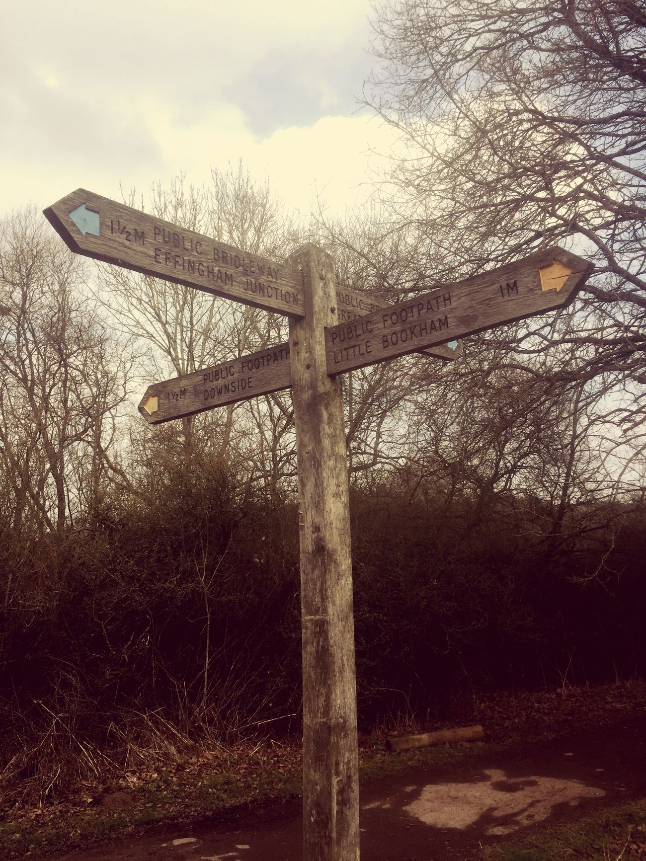 Signpost Crossroads Which Way?