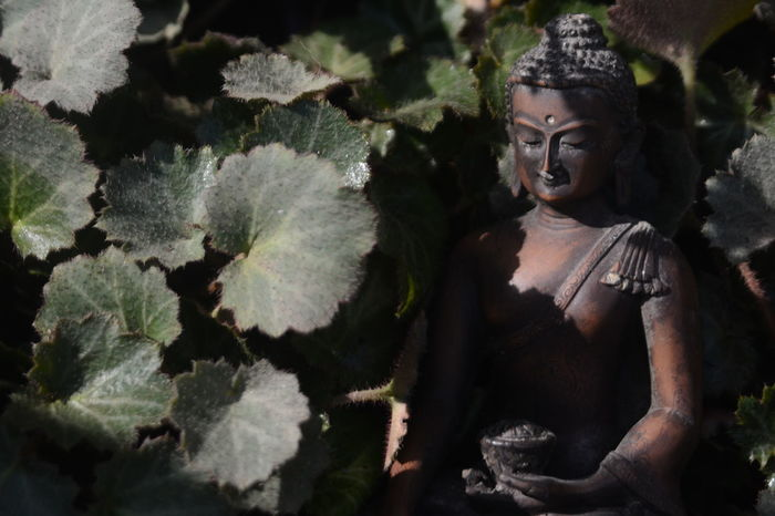 Ancient Beautiful Beauty In Nature Buddha Calm Close-up EyeEm Best Shots EyeEm Nature Lover Faces Of EyeEm Meditation Nature No People Outdoors Peace Peace And Quiet Placid  Sculpture Sculptures Serenity Silence Spirituality Tranquility Finding New Frontiers Lieblingsteil Perspectives On Nature